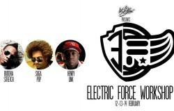 Electric Force Workshop