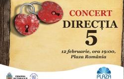 PR-Mesh Timisoara 540x700cm-Lock your love- Valentines